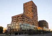 Projektni menedžment pri reševanju naložbe stanovanjsko-poslovnega kompleksa SITULA