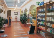 Apotheke und Arztpraxis pri KRANJSKEM ORLU