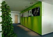 Interior design and office equipment for PWC PricewaterhouseCoopers in Ljubljana